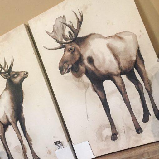 Reno's Best-Kept Secret for Beautiful Artwork is The Find!