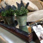 the-find-reno-home-decor-faux-plants