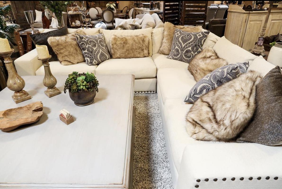 the-find-reno-sofa-shopping