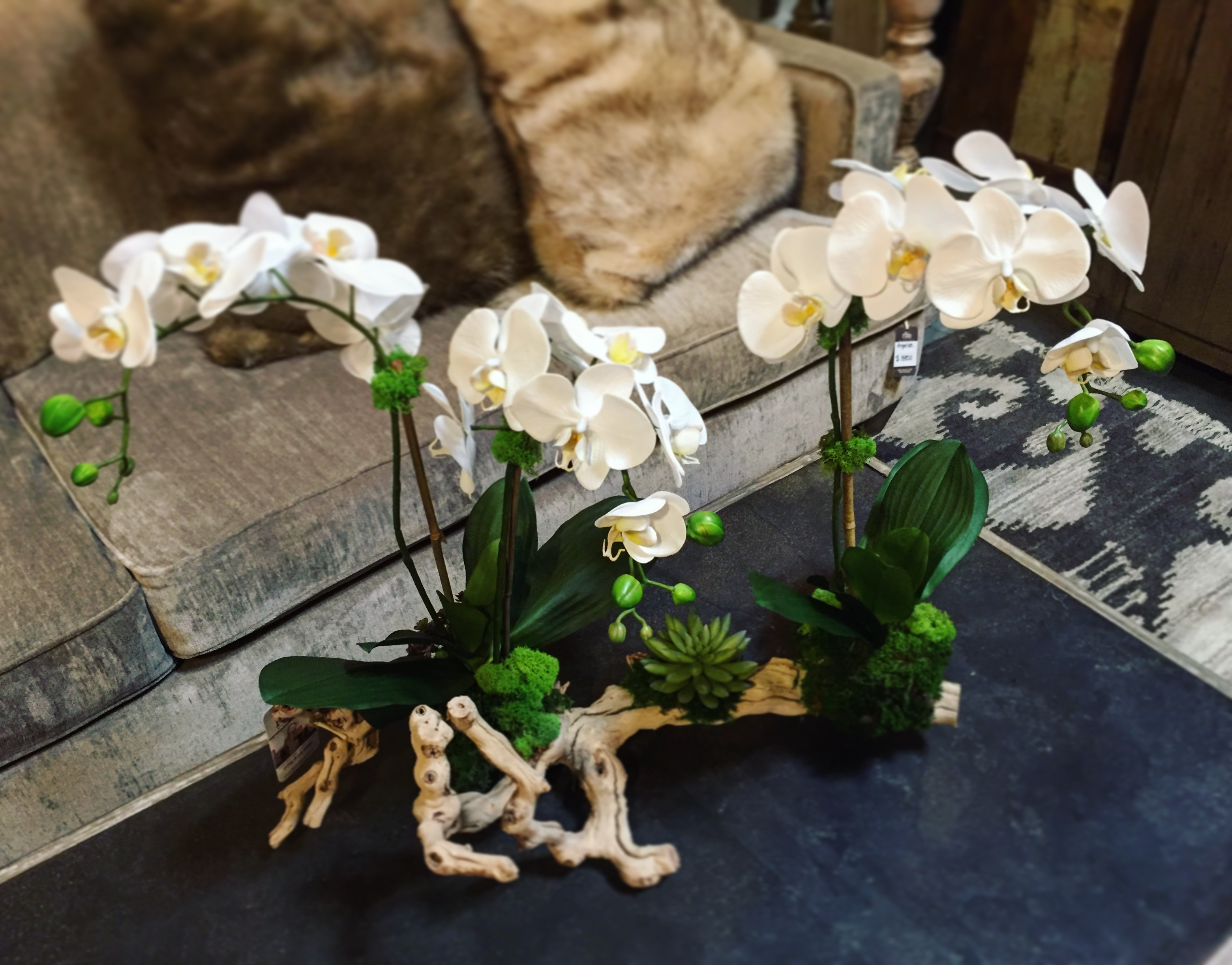the-find-reno-faux-orchid
