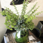 thethe-find-reno-faux-succulents